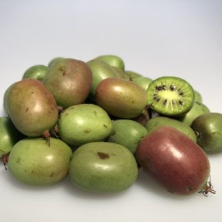 Kiwibeeren Weiki